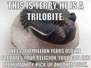 This is Terry