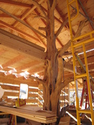 Tree for girder support