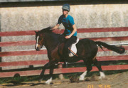 Vintage cantering