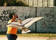 volere volare
