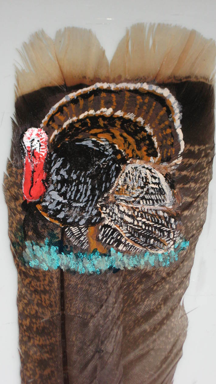 tom turkey 1