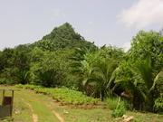 Cemi Mountain