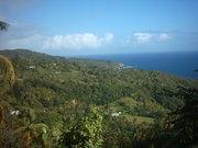 salybia, kalinago territory
