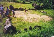 batey en Las Piedras
