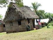 typical Garifuna house