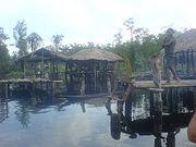 Warao Arawaks