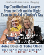 RIGHT AND LEFT SUPER LAWYERS HELP GAY COUPLES