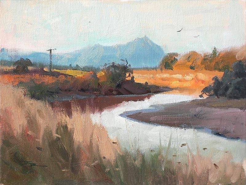 "Ruakaka River - (05Jan10) - 8x10"" - SOLD"