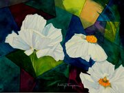 Matilija Poppies & Stained Glass
