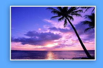 Island Sunsets!