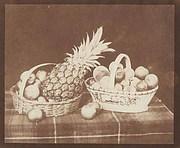 William Henry Fox Talbot: A Fruit Piece.