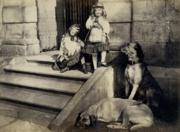 Lovely albumen print, c. 1865. 2 girls, 3 dogs