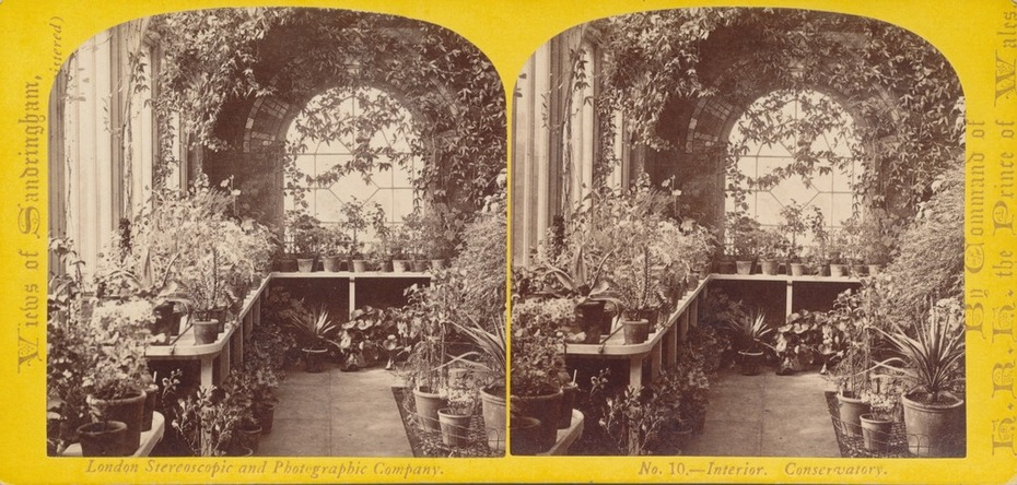 William England #10 Interior View of Conservatory