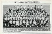 Denise-Falcon Cheerleader, 1993 reunion