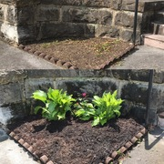 front flower bed