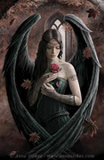 Angel_Rose_by%20Anne%20Stokes