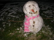 Snow! 02.02.09 003