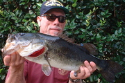 6.5 Pounder Florida Large Mouth Bass