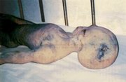 alien-ufo-extraterrestrial-body-recovered-real-images-leaked-out-from-chinas-roswell-1-head-and-torso-gif