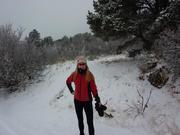 Winter Runs