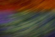 sensazioni colorate