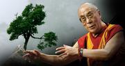 Seed Dalai Lama