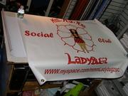 Banner - LadyBugz