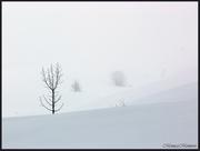 Minimal Snow