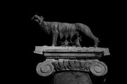 Roma,scatti notturni in b\n..i nerissimi