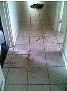 my bloody hallway
