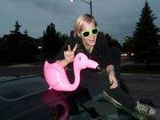 My Flamingo :D