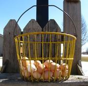 Vintage Egg Basket