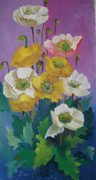 yellow poppies solo