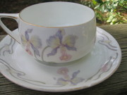 Rosenthal Cup and Saucer