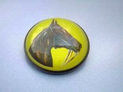 Reverse Painted Intaglio Horse Brooch
