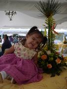 centro de mesa y mi princesita