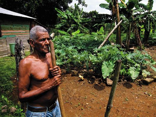 Taino-farmer-planting-8