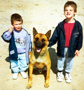 21_Un Bodyguard et Babysitteur