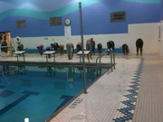 College Knowledge and Swim Clinic