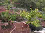 Spring 2012 111