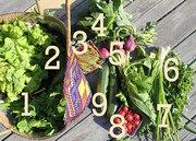 CSA Cookoff: Greens & Beans Veggie Burger, Summer 2014 Edition