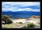 Tasmania 8