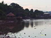 landscape A (1)