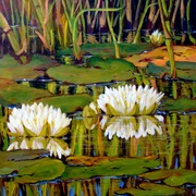 Lilies Among the Reeds