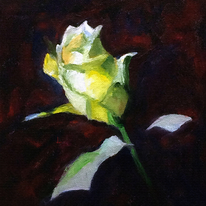 Yellow Rose Bud Study dor
