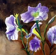 dor's Workshop 52 Purple