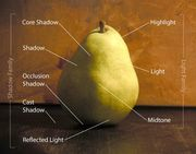 Pear_light_diagram