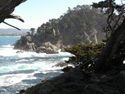 point-lobos-resource-3