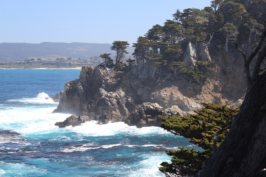 point-lobos-resource-4