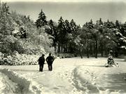 Edmond Sacré, Winter landscape #4